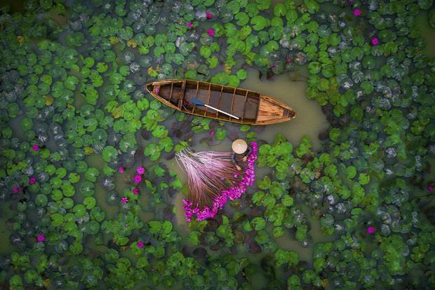 A világ érdekes drón fotó verseny győztes