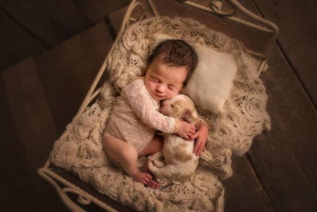 A világ érdekes baba fotó állat  kölyök