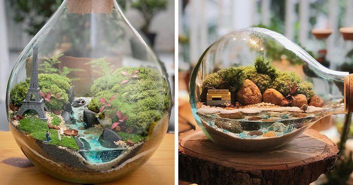 üveg palack világ ökoszisztéma