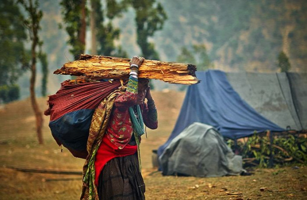 A világ gyűjtögetők utolsó Nepál Reute