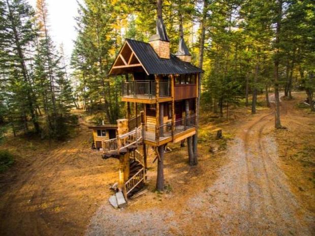 A világ érdekes ház faház fán