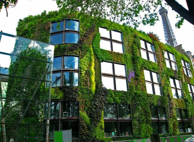 A világ érdekes Párizs rendelet törvény zöld felület kert