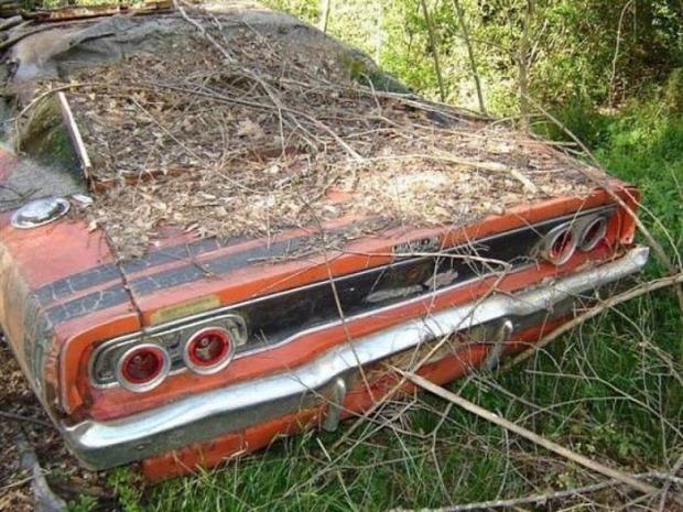 A világ érdekes autó elveszett elhagyott