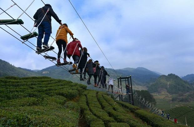 A világ érdekes Kína tea ültetvény híd