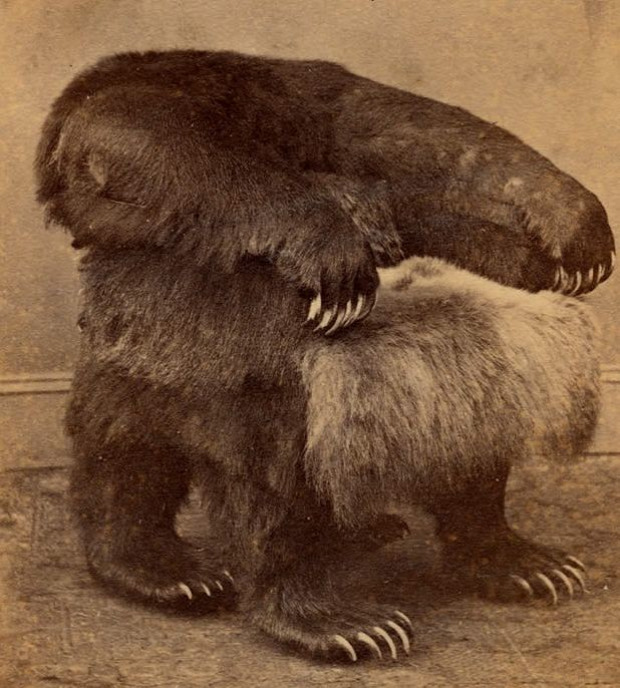 az isten állatkertje fotel szék