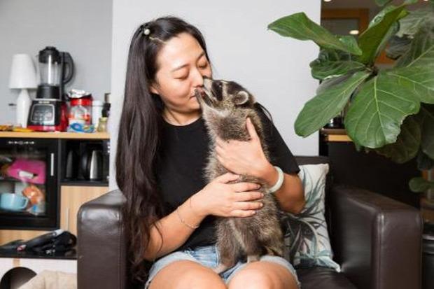A világ érdekes háziállat Kína
