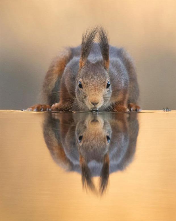 A világ érdekes természet fotó