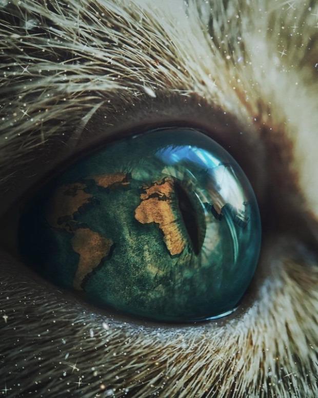 A világ érdekes photoshop művész