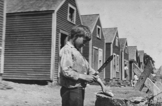 A világ érdekes 1908 gyerkmunka gyár konzerv szardinia