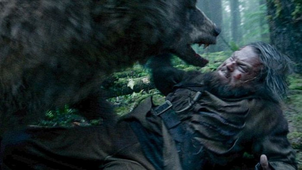 A világ érdekes Leonardo Dicaprio seb medve