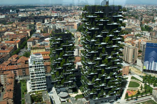 zöld város park ház torony fal