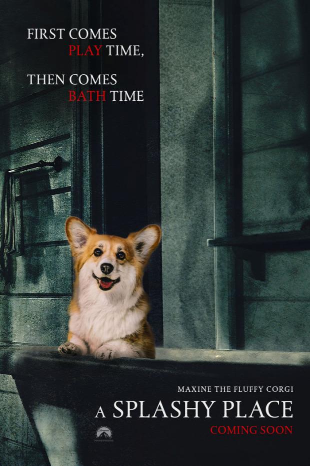 A világ érdekes kutya mozi plakát corgi