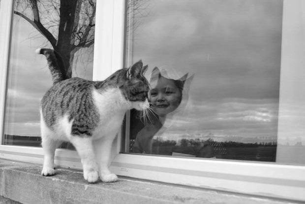 A világ érdekes tükröződés