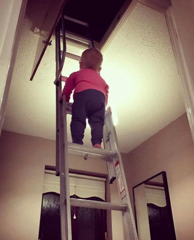 kisbab  veszély