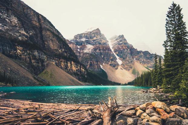 A világ érdekes Kanada vadon