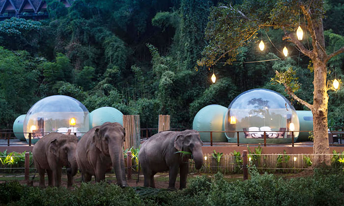 Thaiföld buborék szállás