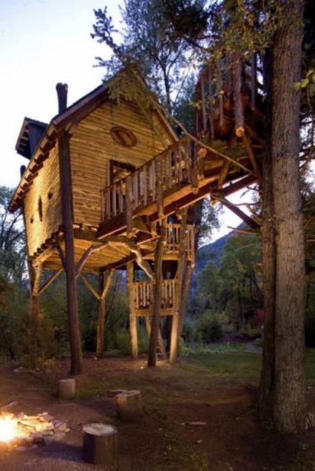 A világ érdekes faház fa ház lomb