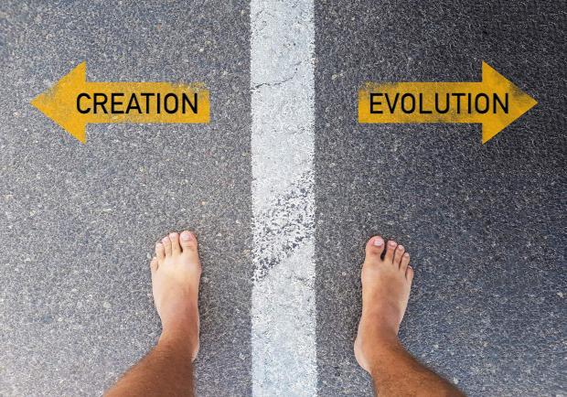 evolúció kreacionizmus intelligens tervezés