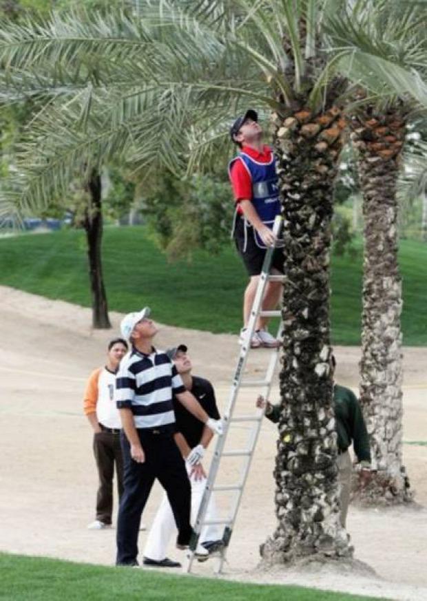 A világ érdekes golf játék sport vicces humoros