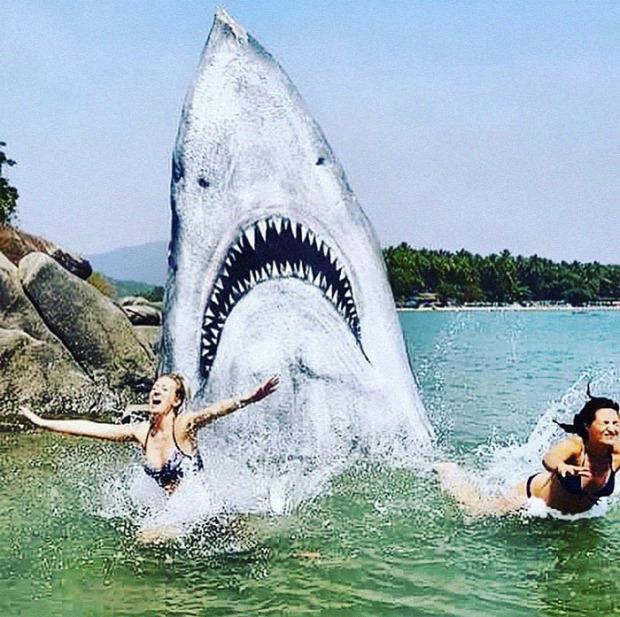 A világ érdekes India Goa szika cápa graffiti
