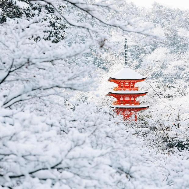 A világ érdekes Japán Kiotó hó fehér