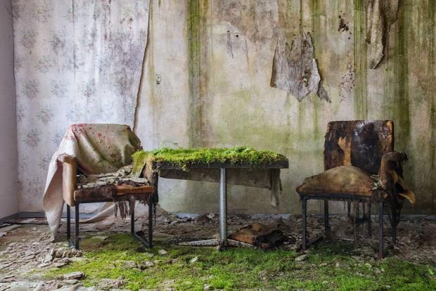A világ érdekes rom elhagyott épület növény természet