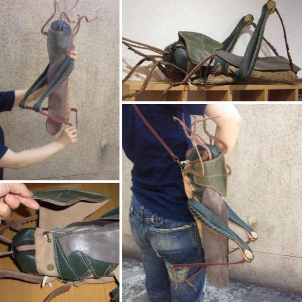 A világ érdekes táska élőlény bogár