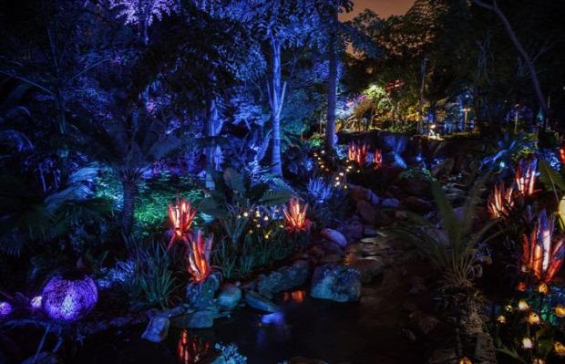 A világ érdekes Disney élménypark vidámpark Avatar Pandora