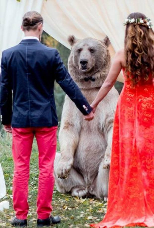 A világ érdekes Oroszország Szibéria esküvő medve