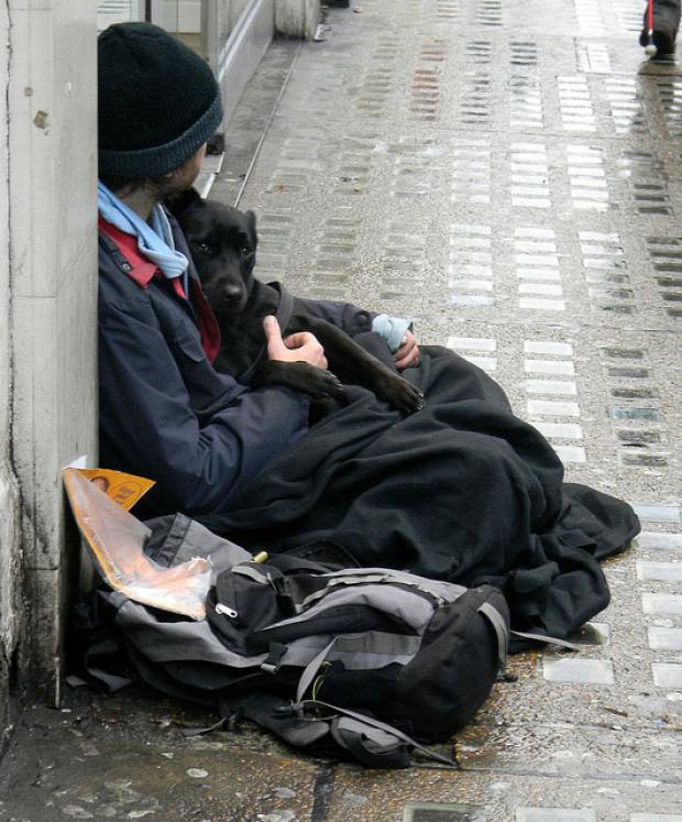A világ érdekes kutya legjobb  barát hajléktalan