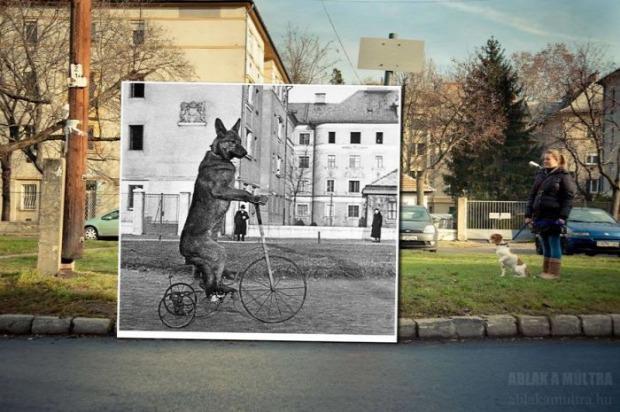 A világ érdekes régi új fotó összemosott