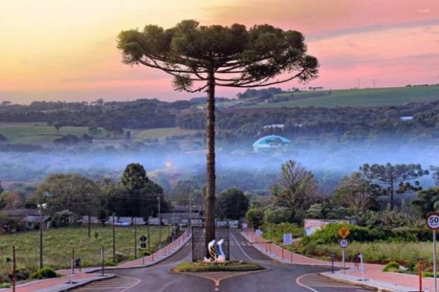 A világ érdekes fa építkezés mentés megóvás