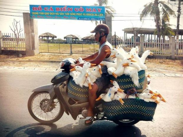 A világ érdekes szállítás pakolás teher