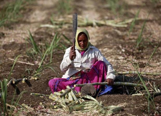A világ érdekes India szegény