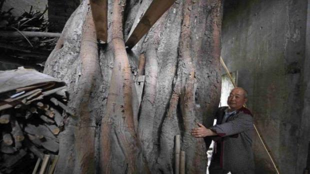 A világ érdekes ház fa 400 éves Kína