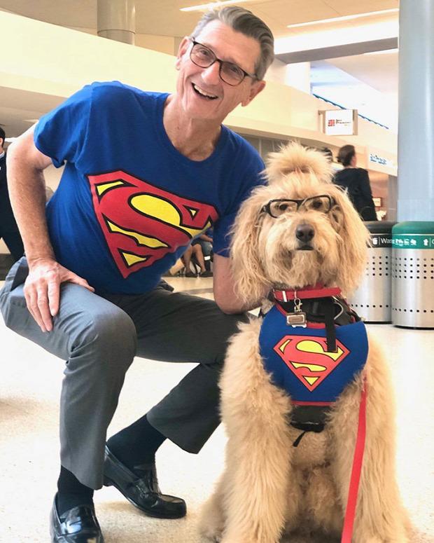 San Francisco  reptér kutya malac lelki segély