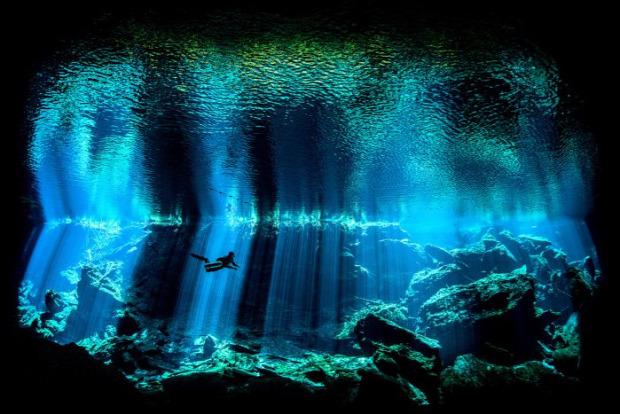 A világ érdekes fotó verseny víz alatti