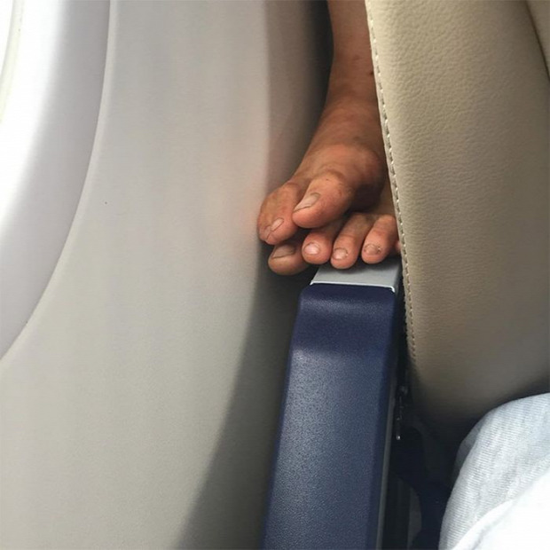 Isten állatkertje repülőgép utas bunkó rémisztő