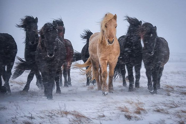 A világ érdekes National Geographic Instagram