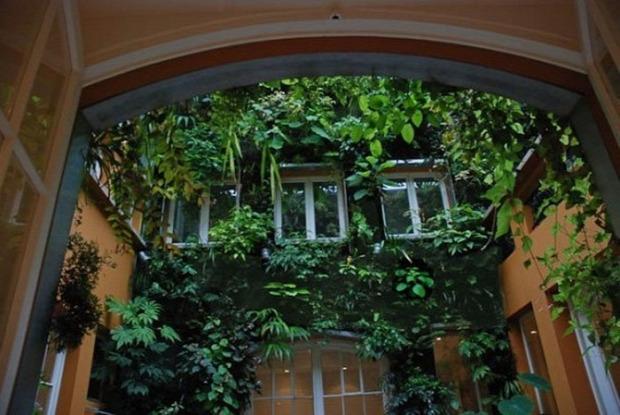 A világ érdekes Párizs botanikus ház lakás növény dzsungel
