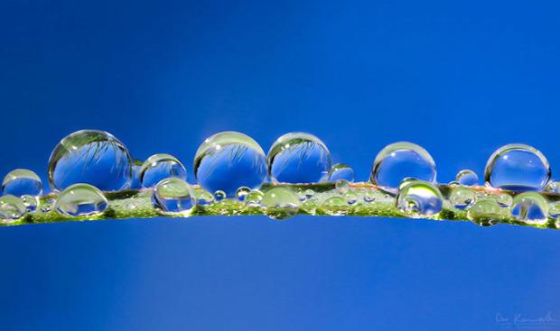 A világ érdekes makrofotó vízcsepp