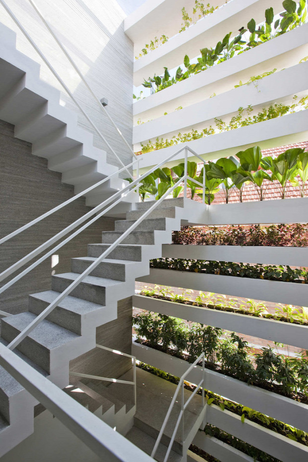 kert növényzet zöld ház eko önfenntartó környezet nagyvilág ház minimalista stílus