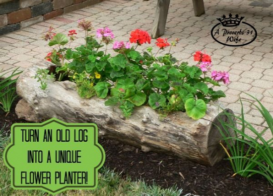 40+ Creative DIY Garden Containers and Planters from Recycled Materials 7_1