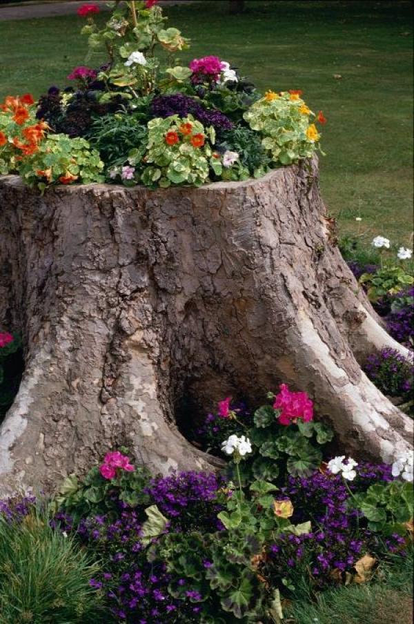 log garden <3