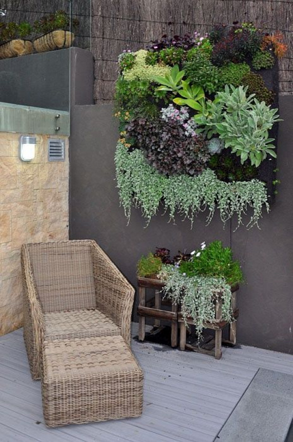 """This is one of the best vertical garden examples I've seen. In the """"how tos"""" they are never mature and I havent thought much of them.. but that is ... cool!"""