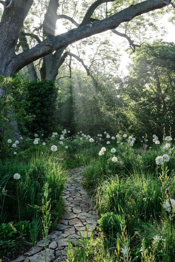 I love the light in this photo.  It shows the simplicity of the pathway . . . perfect combination of growth/stone.