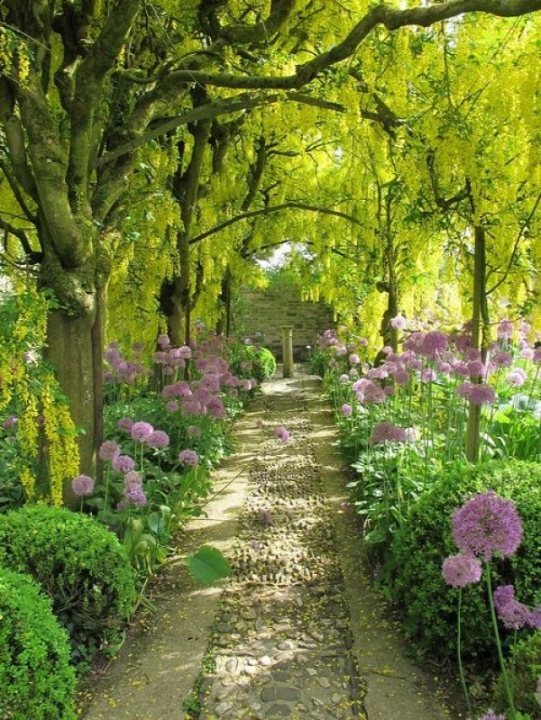 A walking path covered by trees and framed with flowers is a lovely thing.
