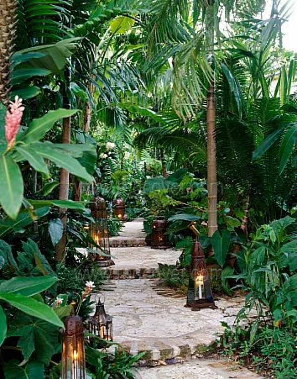 Tropical garden with walkway...    If only I lived somewhere where the climate could support this foliage!!