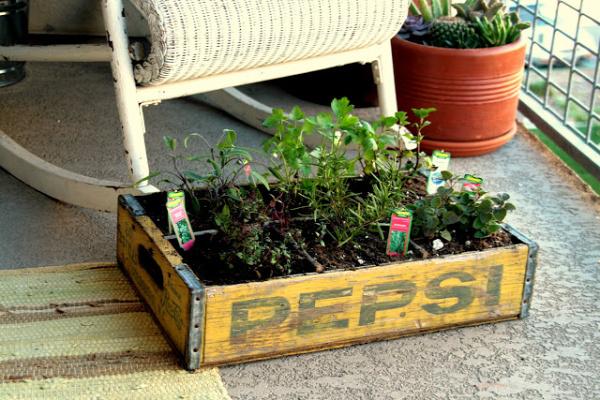 35+ Creative DIY Herb Garden Ideas --> DIY Herb Garden In An Old Crate