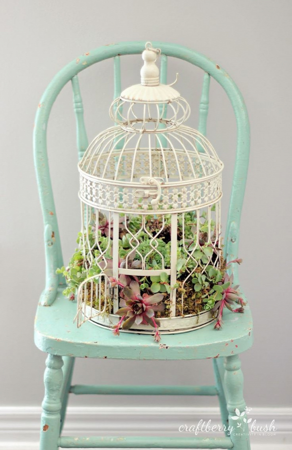 Craftberry Bush: How to plant succulents in a birdcage #succulent #gardening